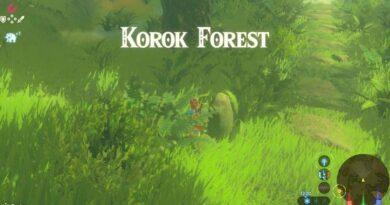 Zelda Breath of The Wild Korok Forest Guide