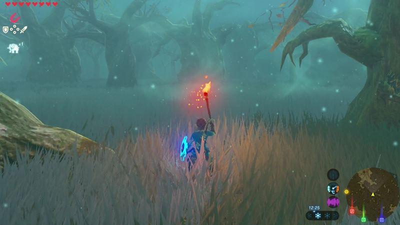 Petunjuk arah Lost Wood 6 Zelda Breath of The Wild