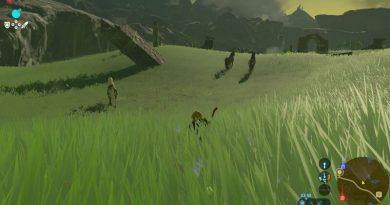 Zelda BOTW cara Tame Horse