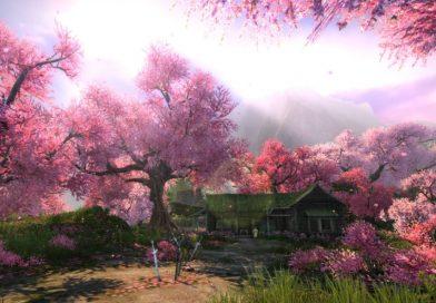 lokasi-sakura-bloom-FI