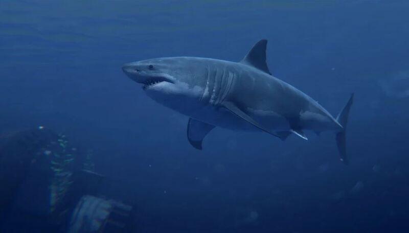rust-shark-update